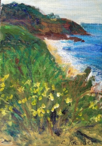 The other Crystal Cove